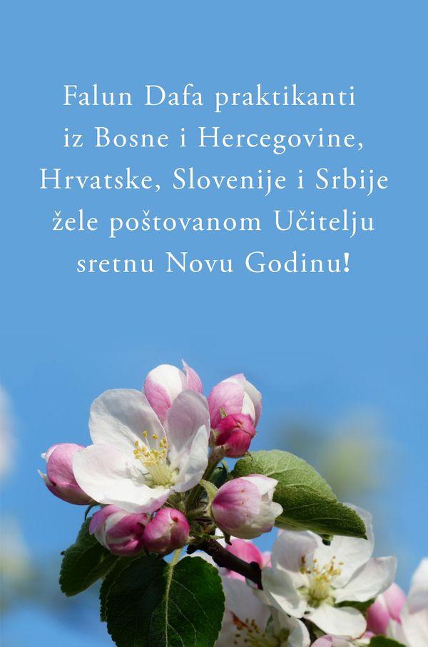 hrvatske novogodišnje čestitke Praktikanti diljem svijeta šalju novogodišnje čestitke cijenjenom  hrvatske novogodišnje čestitke